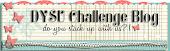 DYSU challenge