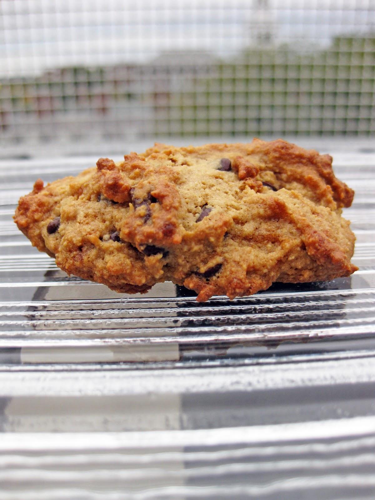 Paleo Chocolate Chip Cookies: Comparing 6 Recipes: paleo recipes ...