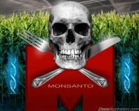 Μονσάντο έλεγχος τροφίμων