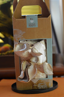 Back to the Roots- Grow Your Own Mushroom Garden