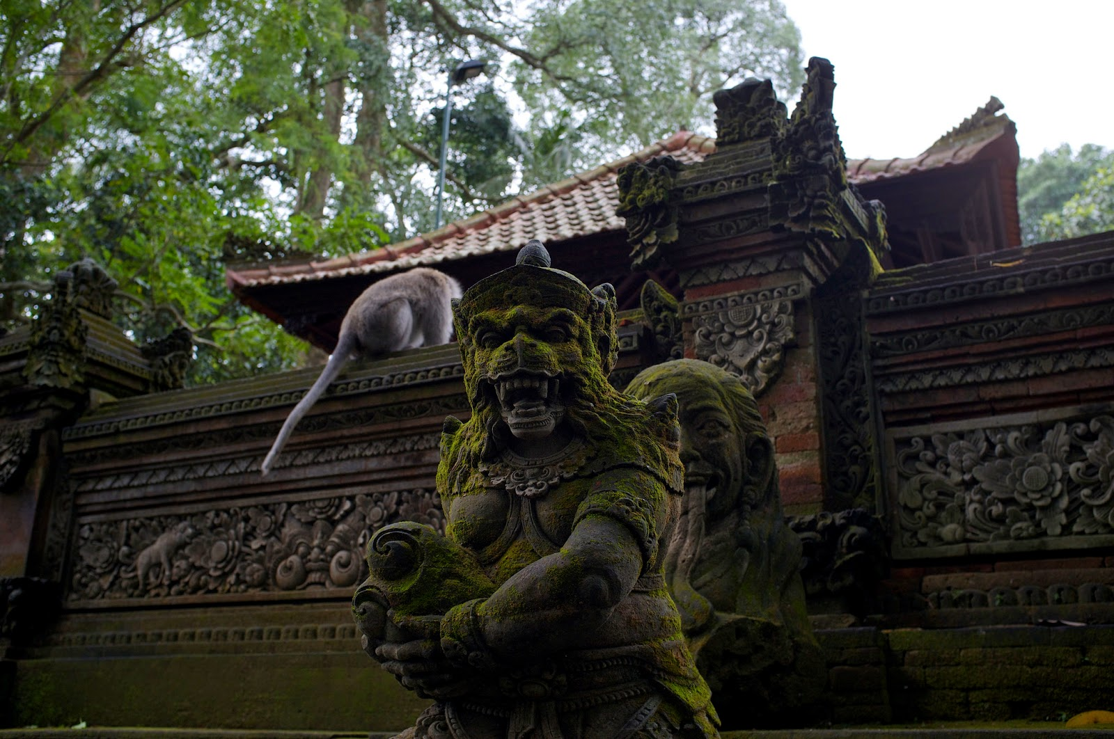 Bali Attractions: Ubud Monkey Forest4