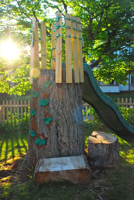 Adventure awaits in our tree trunk as a climbing wall, crow's nest and slide