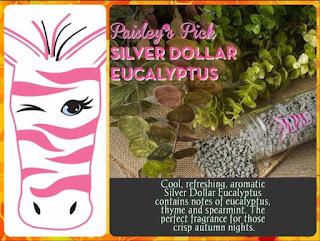 Pink Zebra Silver Dollar Eucalyptus image