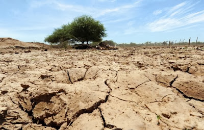 Cause of El Nino abnormality found