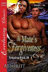 A Mate's Forgiveness