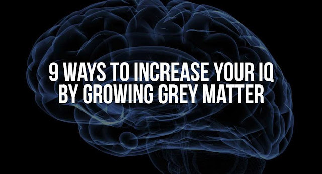 9 Ways to Increase Your IQ by Growing Grey Matter