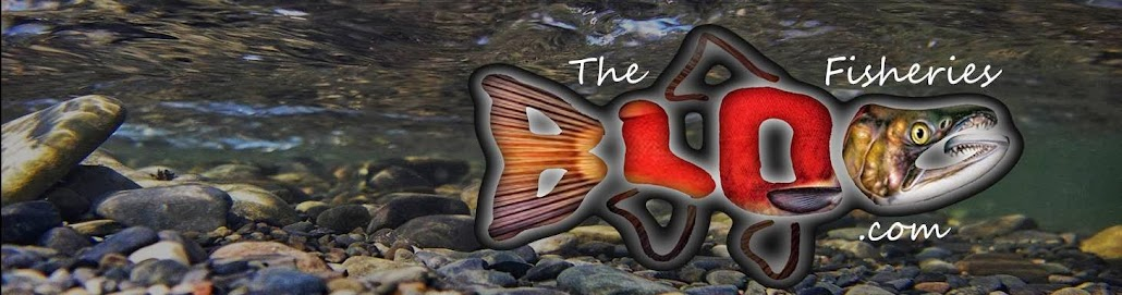 The Fisheries Blog