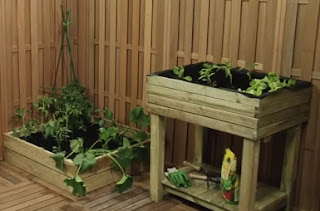 Mesas de madera con huerto urbano
