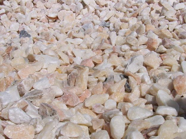 pedras de jardim tipos : pedras de jardim tipos: de Inverno ou Internos!!! E 20 Plantas ideais para ambientes fechados