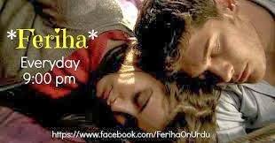 Feriha Urdu1