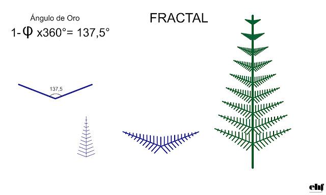 Angulo de oro y Fibonacci