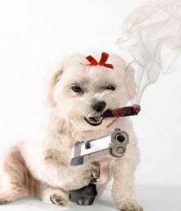 youre welocme dog