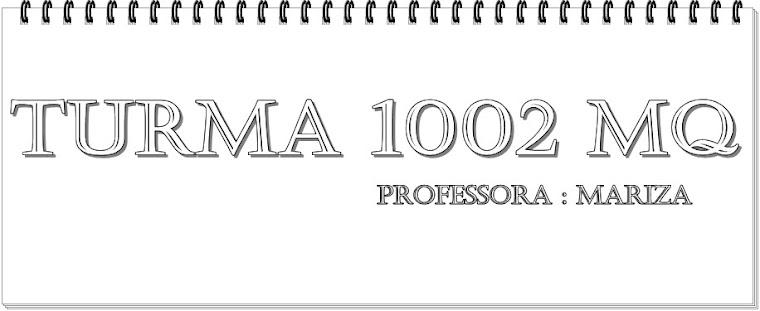 Turma 1002
