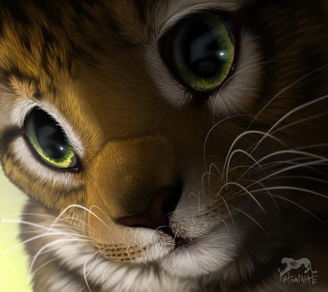 милые красочые картинки зверей