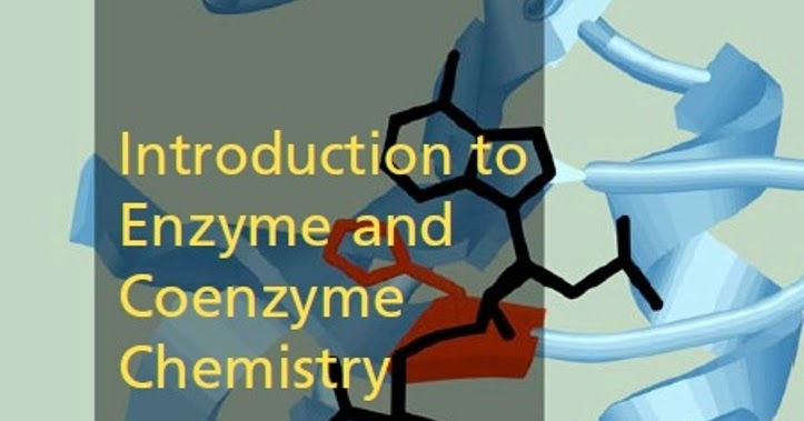 an introduction to enzyme