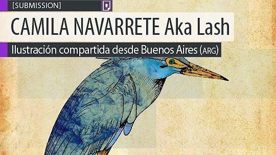 Ilustración. Garcita azul de CAMILA NAVARRETE