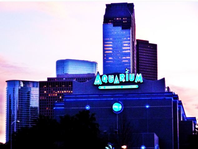 Houston In Pics Aquarium 39 S Contribution To The Downtow