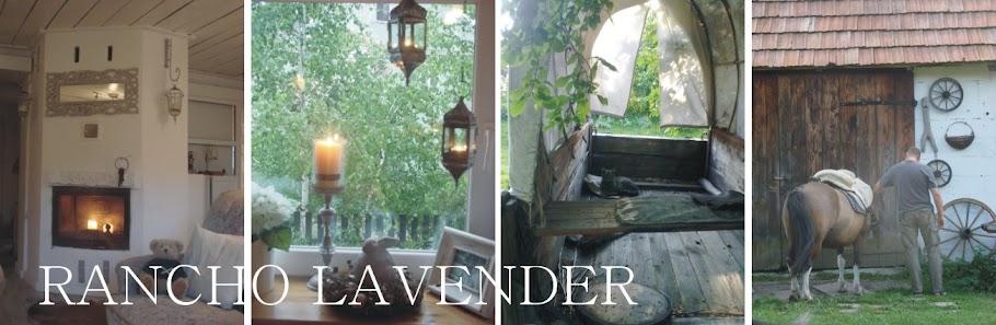 Rancho Lavender
