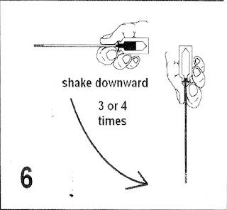 B6. Vẩy để đưa tinh vào cọng rạ