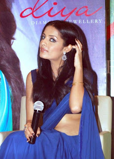 Celina Jaitley in Blue Transparent Saree Photos