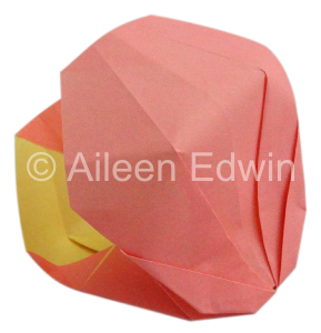 Origami Clam Shell