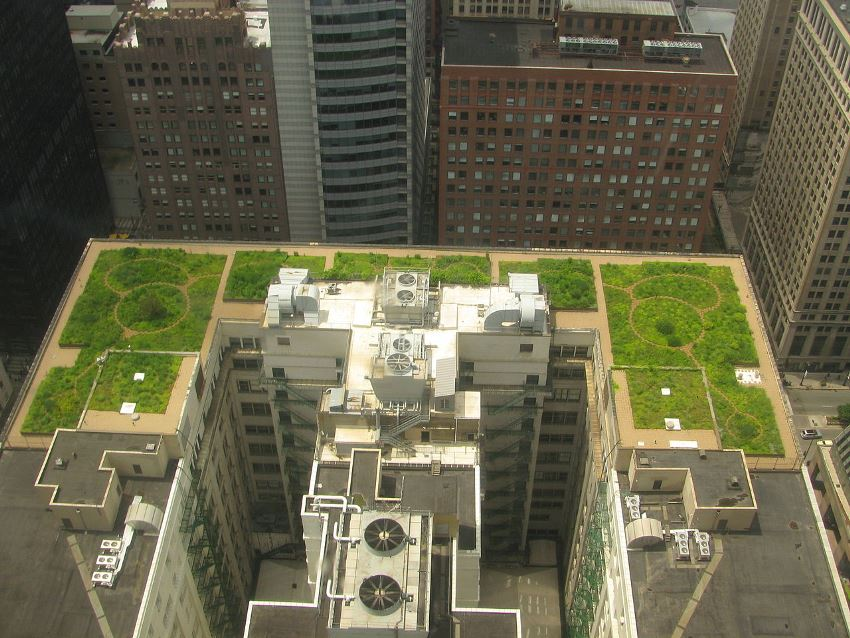 New Rooftops in France Now Must Be Covered in Plants or Solar Panels