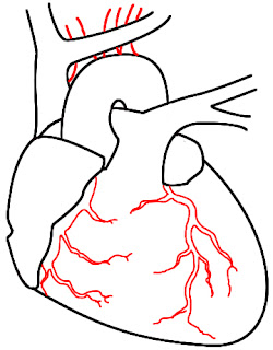 How To Draw A Heart Step 10