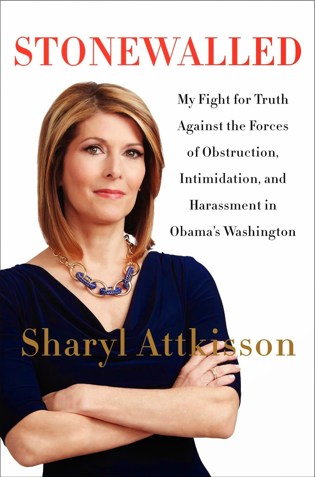 Sharyl Attkisson - Stonewalled