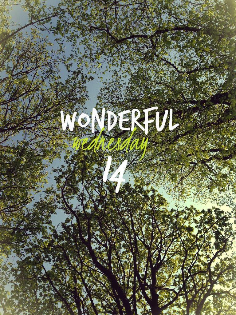 Wonderful Wednesday 14