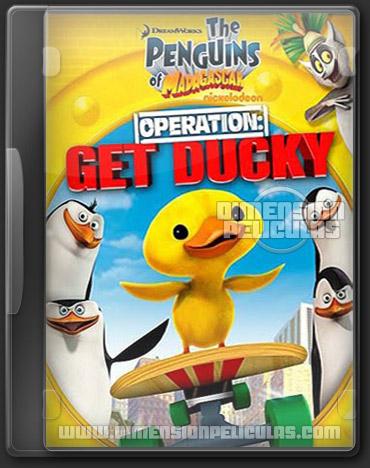 Los Pingüinos de Madagascar: Operation Get Ducky (DVDRip Español Latino) (2012)