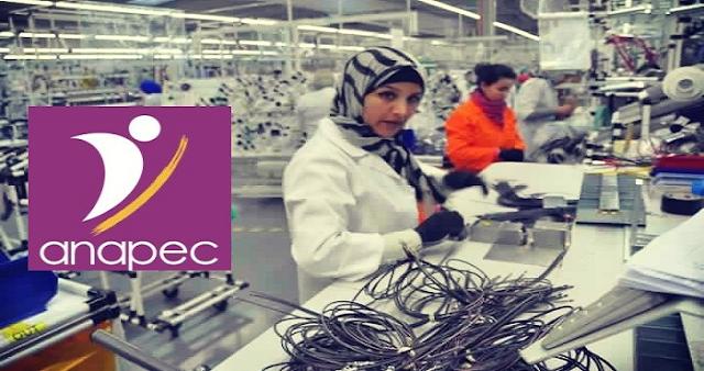 مصنع بمدينة الدار البيضاء يعلن عن توظيف 200 عاملة الكابلاج – إناث