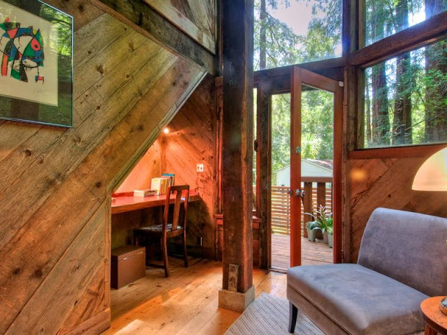 Photo of working room inside of tree house in the forest