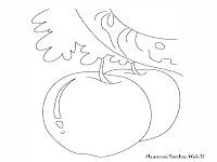 Gambar Mewarnai Buah-Buahan Apel