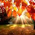 प्रार्थना  में पूर्ण विश्वास ईश्वर के आशीष का बरसात लाएगा