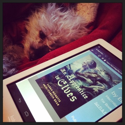 Murchie sprawls partway out of a blanket cave, his front paws stretched out before him at an angle and his eyes slightly slitted. Before him is a white Kobo with a NetGalley page displaying An Apprentice To Elves's cover on its screen. The cover features a white woman with very pale blonde hair. She wears a helm and brandishes a spear as she runs, two enormous wolves close beside her.