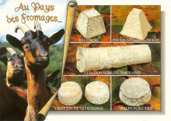 postcard showing goat and five different goats cheeses