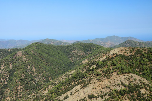Green Hill Island Landscape