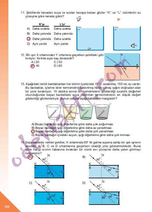 Sınıf fen ve teknoloji çalışma kitabı sayfa 132 133 134 in