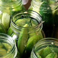 Crisp Garlic Dill Pickles - All Fresh Ingredients Recipe