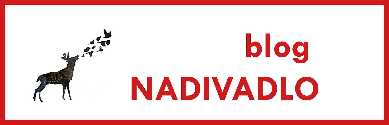 blog NADIVADLO