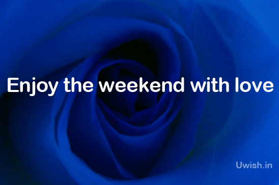 Rose is the expression of love. What more than a blue rose with dim light, an evidence of romance in the wish to your love. Enjoy the weekend with love.