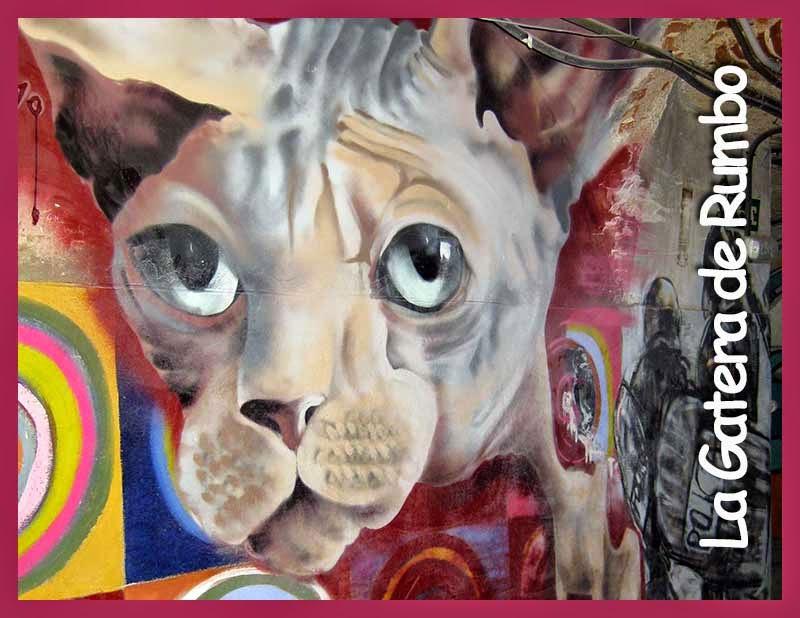 Gato grafiti Tabacalera Lavapies