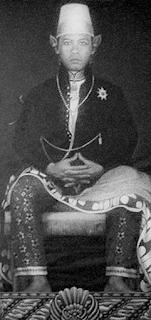 Biografi Sri Sultan Hamengkubuwono IX