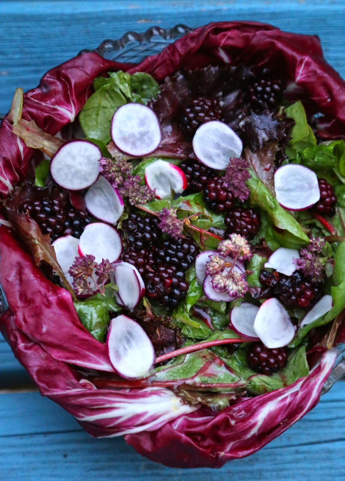 pickled blackberry salad with radicchio and radishes