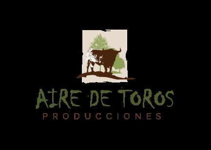 AIRE     DE     TOROS