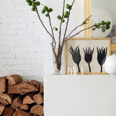 Fig twigs in vase