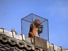 赤山禅院:鬼門除けの猿