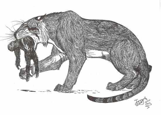 10 Kucing Prasejarah Terbesar di Dunia|http://bambang-gene.blogspot.com