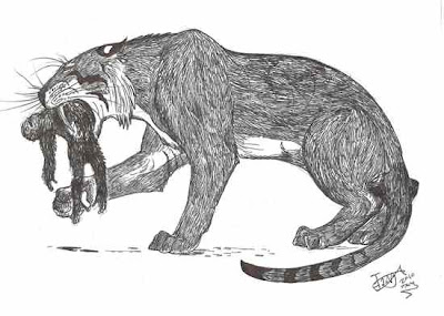 5 Kucing Besar Zaman Prasejarah [ www.Bacaan.ME ]