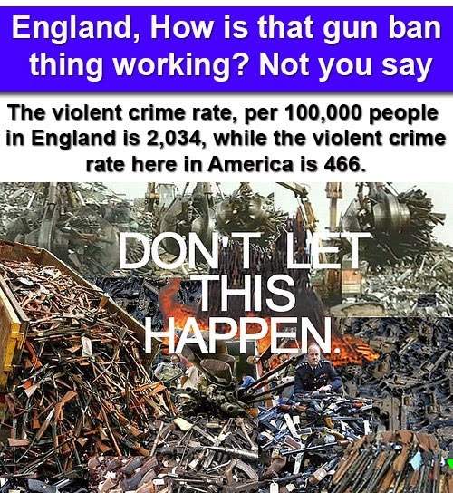 Banned In Uk: A Sheep No More : England, How Is That Gun Ban Thing